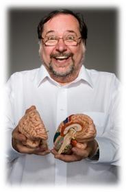 12 lois du cerveau - John Medina