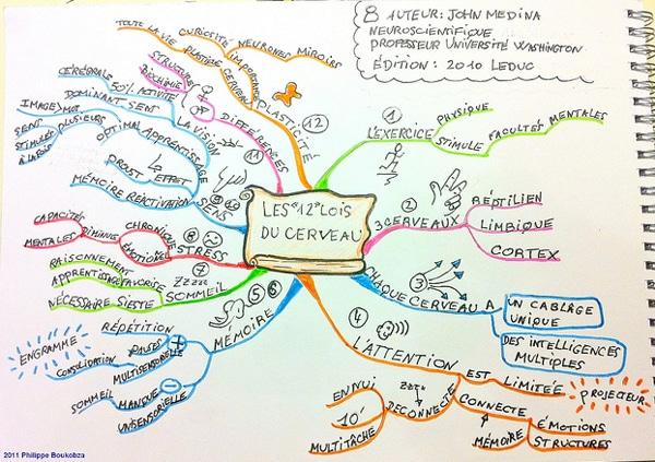 carte-12 lois du cerveau de John Medina