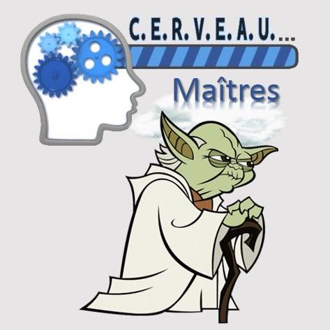 Maîtres de mémoire, efficience et développement personnel
